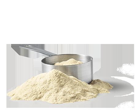 Sk-ingredients-enhancer-whey-protein